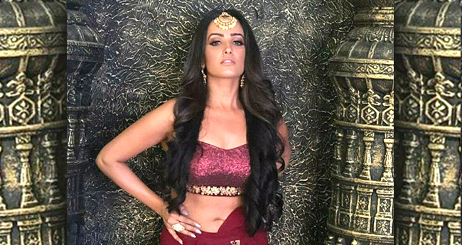 Anita Hassanandani: I'll plan a baby by the coming year or next to next year for sure