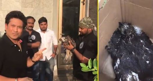 Video: Cricket's God Sachin Tendulkar Feeds A Dehydrated Bird, Makes Us Believe In Humanity