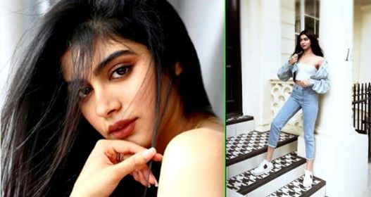 Latest Picture Of Stylish Khushi Kapoor Is Viral On Internet And Fans Are In Love With Her Again