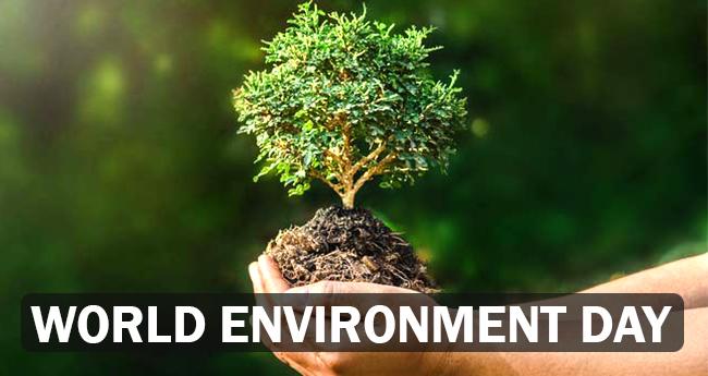 World Environment Day: Celebs like Dia Mirza, Kangana, Alia, Arjun, Juhi escort the #BeatPlasticPollution drive, Twitterati follow