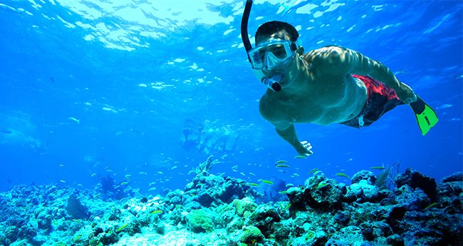 All You Need To Know About Popular Water Sports Snorkeling In India