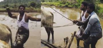Indian Farmers Take Up The Kiki Challenge, And It Is Actually Cool And Safe