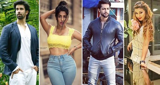 Bigg Boss 12 Contestants List Is Out, Celebrities Who Are All Set To Enter The House