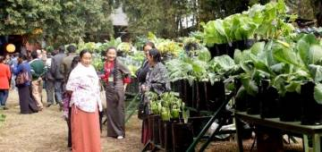 Sikkim Bags The Award For Being 100 Percent Organic State
