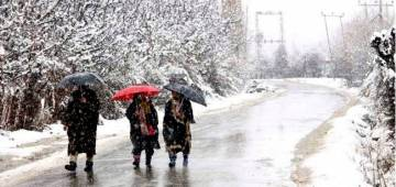 Kashmir currently is as a vision in white with the fresh snowfall