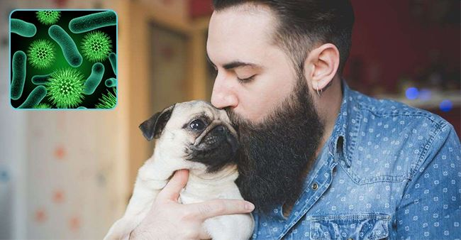 Men with Beard Carry More Bacteria than a Dog's Fur, Says a New Study
