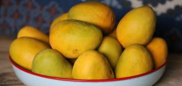 10 amazing facts about the king of fruits, Mangos