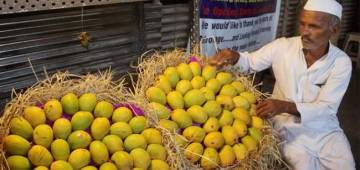 Taste Haji Kalimullah's New Variety of Mango Named After Amit Shah