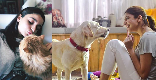 Popular B-Town Actresses alongside their Beloved Pets Becomes a Sensation across Social Media