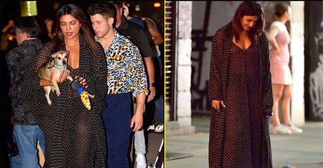 PeeCee and Nick Jonas enjoy dinner date along with cute pet Diana; Pictures turn viral