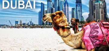 Best travel tips to follow for your next Dubai trip