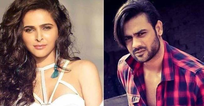 BB 13: Madhurima and Vishal to give dance performances on Finale Day