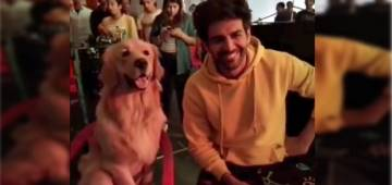 Kartik Aaryan copies an adorable dog's gesture and it's more than hilarious; Watch