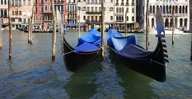 COVID-19: Venice Canals water turns crystal clear after the lockdown