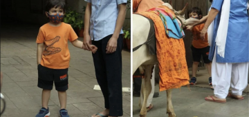 Taimur Ali Khan greets cow by joining hands, asks owner to play flute