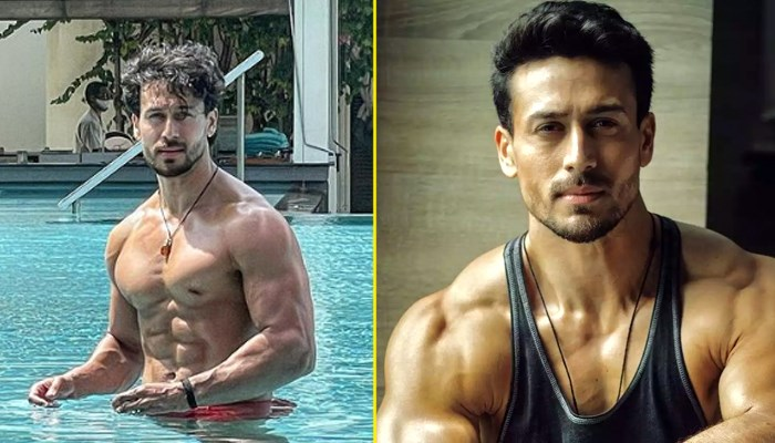 Tiger Shroff shared sizzling photo standing in swimming pool, sister Krishna's ex Eban Hyams drops comment