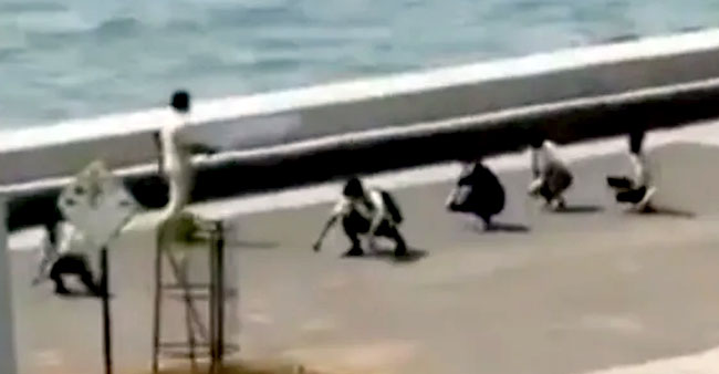 Mumbai Police Punishes 5 Men By Making Them Do 'Murga Walk' After They Try To Enter Sea At Marine Drive