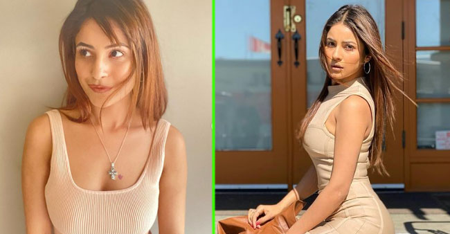 Shehnaaz Gill Looks Breathtaking In Bodycon Dress; Fans Gush In Comment Section