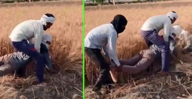 Video of desi jugad by farmer will make you laugh crazily