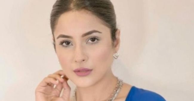 Shehnaaz Gill flaunts her beauty in a blue and white outfit;fans go crazy